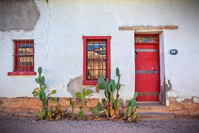 Cactus With Red Door And Windows Art Print
