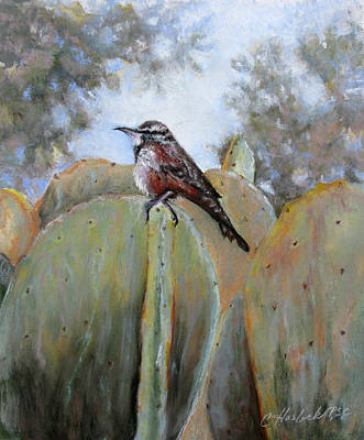 Pastel - Cactus Wren by Carole Haslock