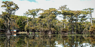 Photograph - Caddo Bayou by Sheena Leann