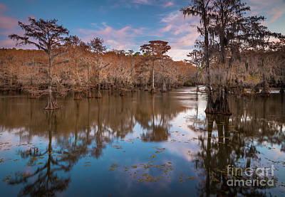 Caddo Lake Photograph - Caddo Blues by Inge Johnsson