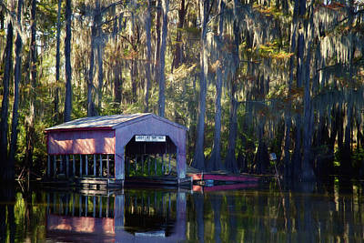 Photograph - Caddo Lake Paintings by Lana Trussell
