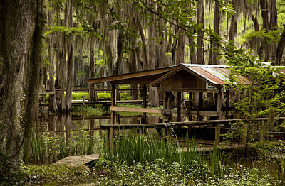 Caddo Lake Reflection Art Print