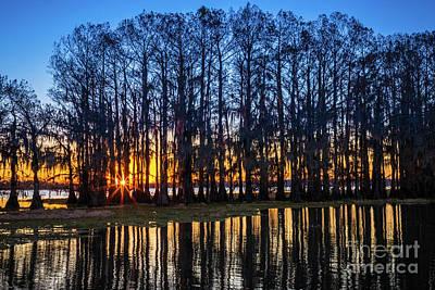 Caddo Lake Photograph - Caddo Lake Sunstar by Inge Johnsson