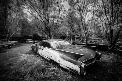 Photograph - Caddy In The Woods Black And White by Debra and Dave Vanderlaan