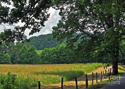 Photograph - Cades Cove 4 by Lydia Holly