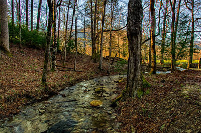 Photograph - Cades Cove Branch Landscape by Gene Sherrill