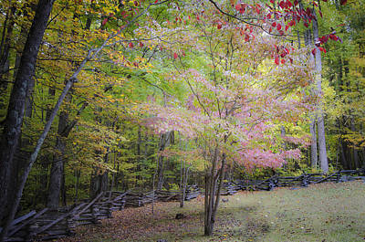 Photograph - Cade's Cove Fall by Debbie Karnes