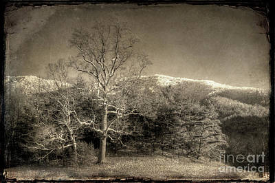 Photograph - Cades Cove by Michael Eingle