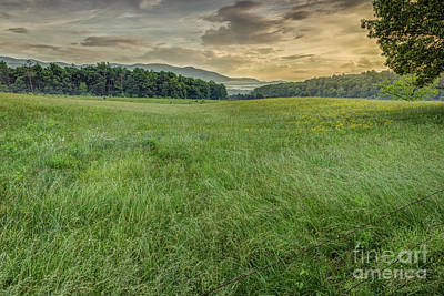 Photograph - Cades Cove by Patrick Shupert