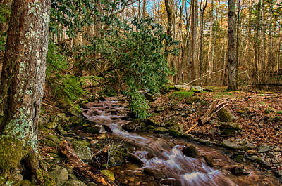 Photograph - Cades Cove Stream Landscape by Gene Sherrill