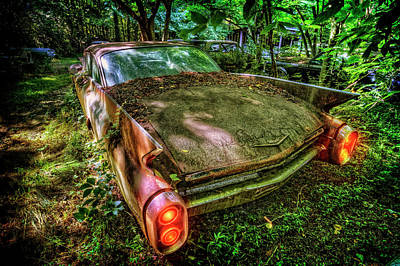 Photograph - Cadillac In The Woods by Debra and Dave Vanderlaan