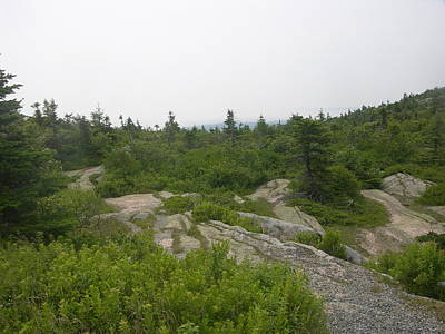 Photograph - Cadillac Mountain by Helen Haw