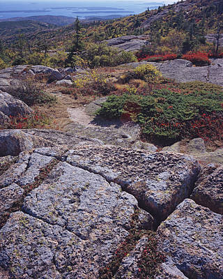 Cadillac Mountain Art Print