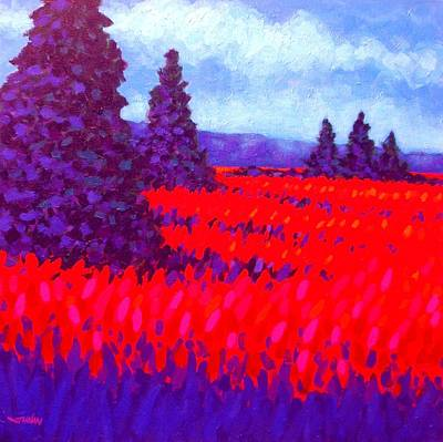 Cadmium Field Art Print by John  Nolan