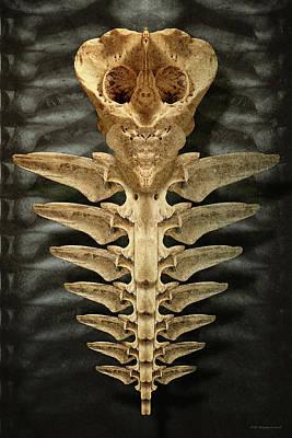 Digital Art - Caduceus by WB Johnston