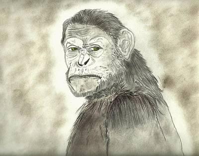 Drawing - Caesar by Nicole Burrell
