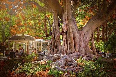 Lisbon Photograph - Cafe By The Grand Old Tree Lisbon Portugal by Carol Japp