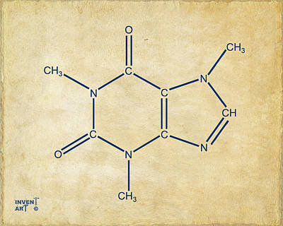 Fine Drawing - Caffeine Molecular Structure Vintage by Nikki Marie Smith