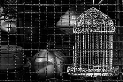 Photograph - Cage Caged by Silvia Bruno
