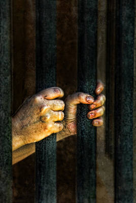 Restrained Photograph - Caged 2 by Jill Battaglia