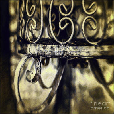 Photograph - Caged by Jean OKeeffe Macro Abundance Art