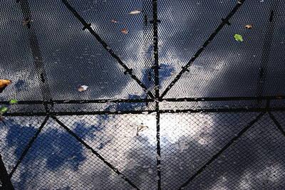 Caged Sky Original