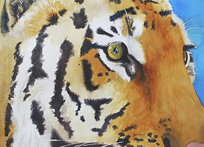 Wall Art - Painting - Caged Tigress by Terry Arroyo Mulrooney