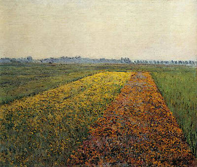 Caillebotte Gustave The Yellow Fields At Gennevilliers Art Print by Gustave Caillebotte