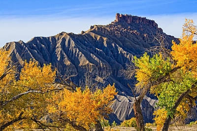Caineville Mesa In Fall Colors Art Print by Utah Images