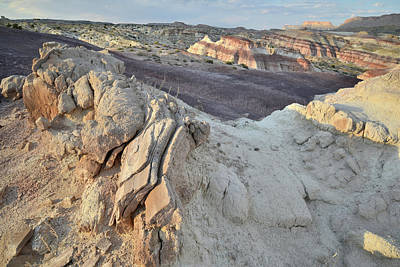Photograph - Caineville Wash Dunescape by Ray Mathis
