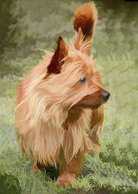Painting - Cairn Terrier - Painting by Ericamaxine Price