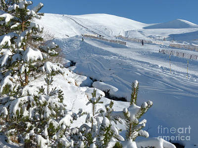 Photograph - Cairngorm Mountain Ski Area by Phil Banks