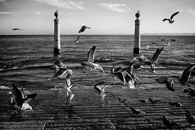 Photograph - Cais Das Colunas by Carlos Caetano
