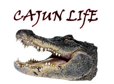 Alligator Mixed Media - Cajun Life Alligator by Gary Perron