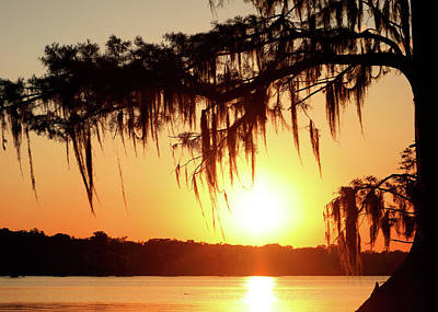 Photograph - Cajun Sun by Nicholas Blackwell