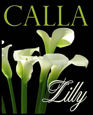 Photograph - Cala Lilly Vertical by Craig Perry-Ollila