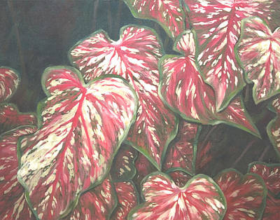 Caladiums Art Print by Linda Eades Blackburn