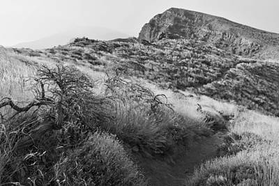Photograph - Caldera De Taburiente National Park La Palma Monochrome by Marek Stepan