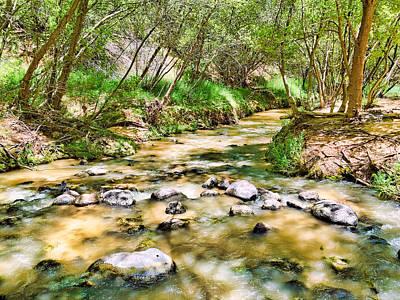 Photograph - Calf Creek by Robert Meyers-Lussier
