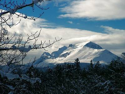 Photograph - Calf Robe Mountain In Winter by Tracey Vivar