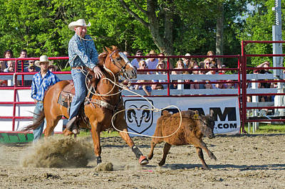 Photograph - Calf Roping by David Freuthal