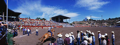 Calf Roping Event At Ellensburg Rodeo Art Print by Panoramic Images