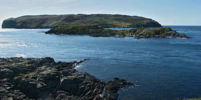 Photograph - Calf Sound by Steve Watson