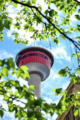 Nirvana - Calgary Tower through trees by John McArthur