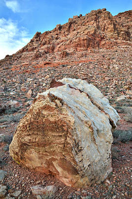 Photograph - Calico Basin by Ray Mathis