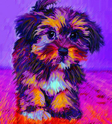 Pups Digital Art - Calico Dog by Jane Schnetlage