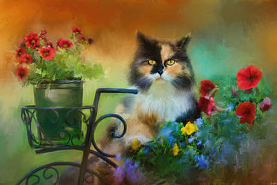 Calico In The Garden Art Print