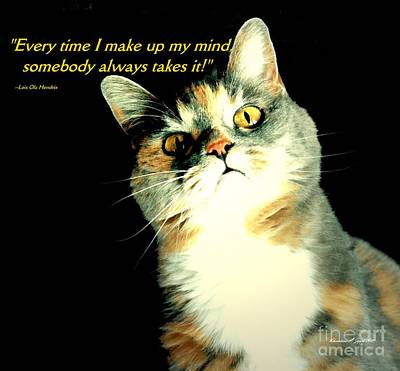 Photograph - Calico Kitty - Paintograph With Losing-mind Quotation by Christine S Zipps