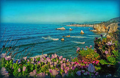 Photograph - California Blue by Hanny Heim