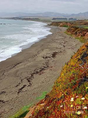 Photograph - California Coast by Douglas Miller